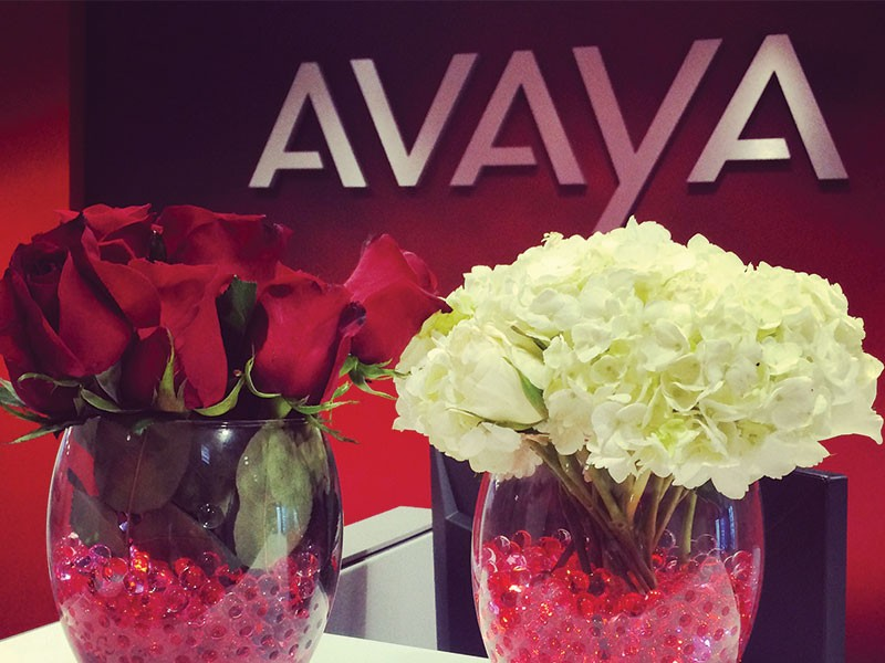 AVAYA Re-launch